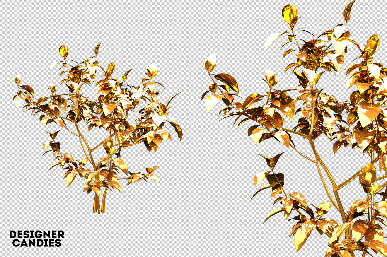 Free Gold Leaf / Foliage Renders