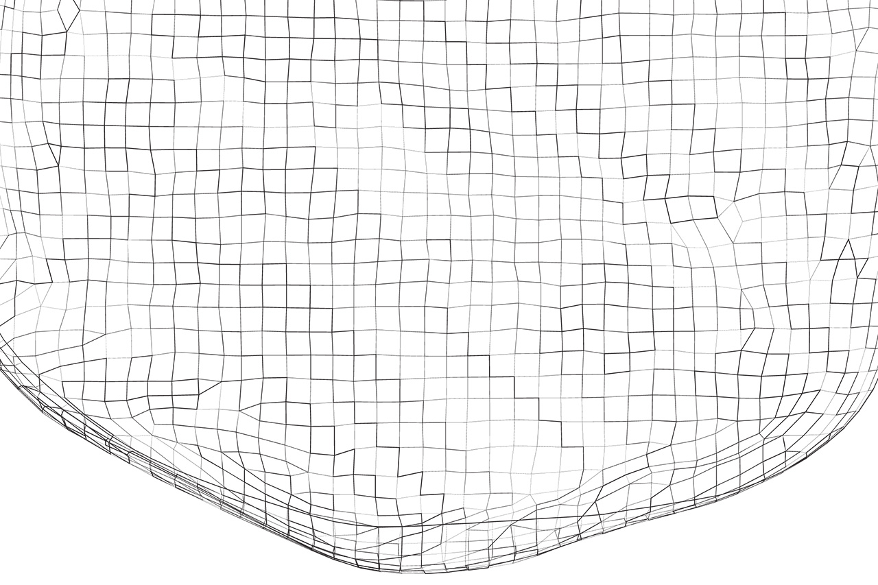 Wireframe Vector