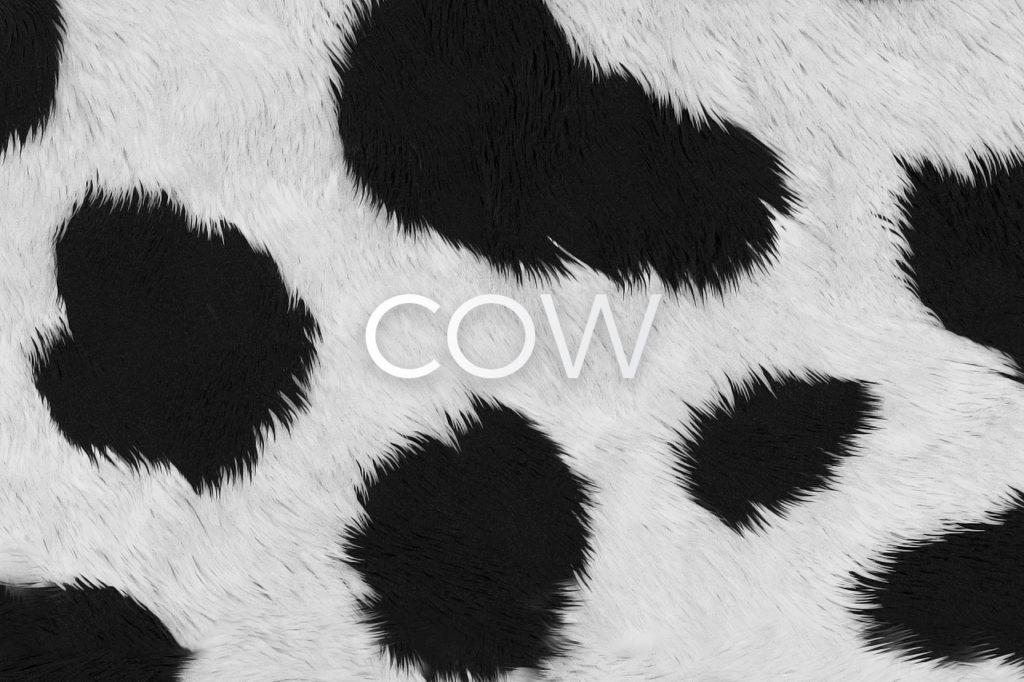 Cow Skin Print Pattern