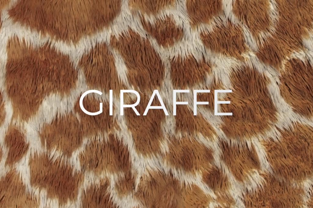 Giraffe Skin Print Pattern