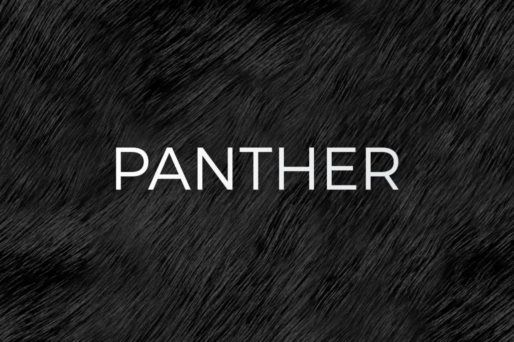 Panther Print Pattern