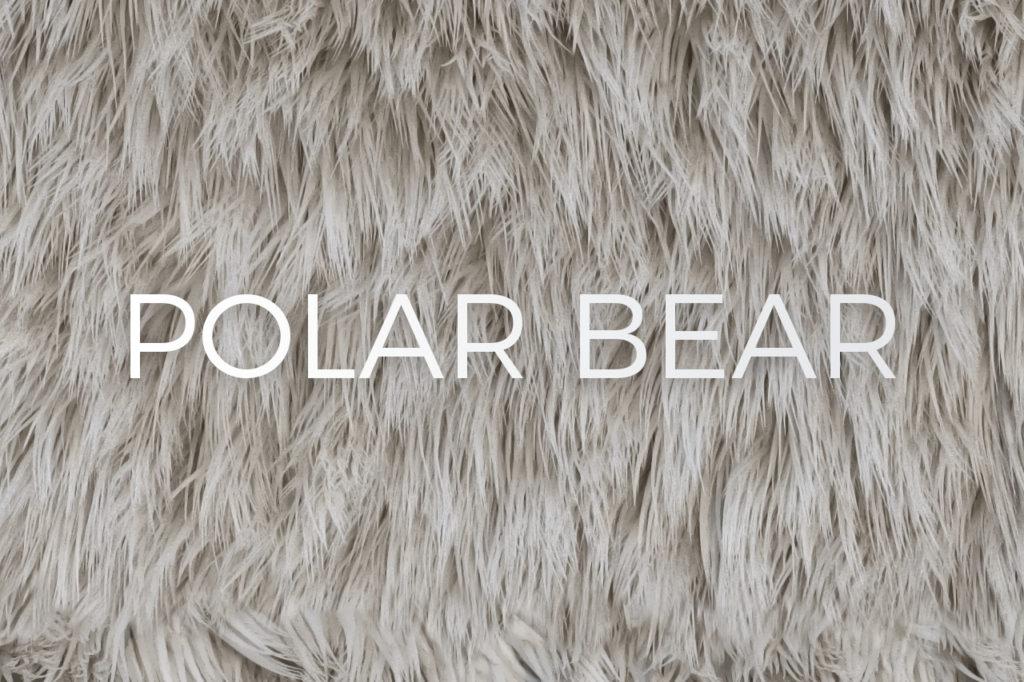 Polar Bear Skin Fur Texture