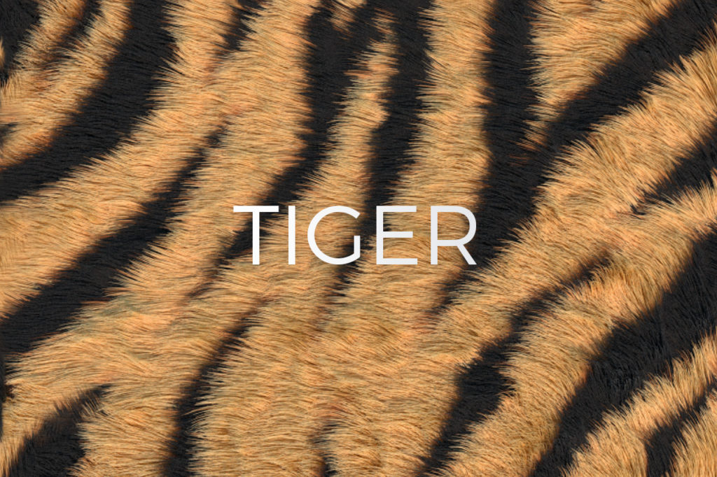Tiger Stripes Print Pattern