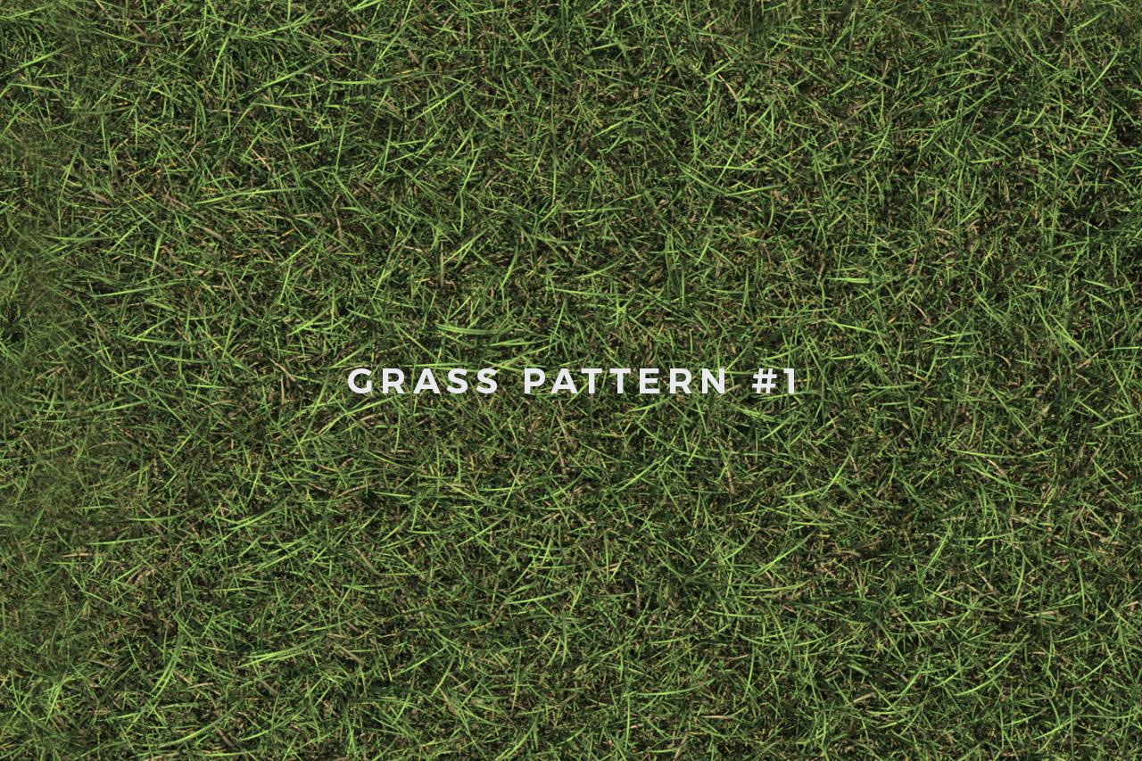 Seamless Grass Pattern/Texture 1