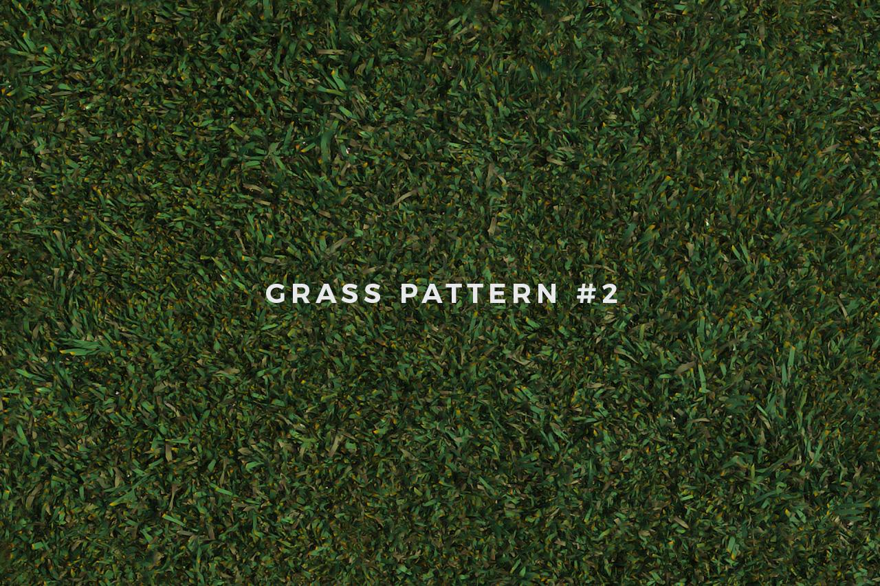 Seamless Grass Pattern/Texture 2