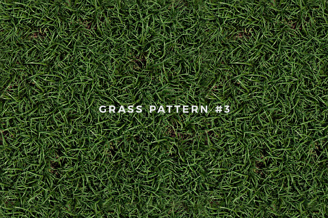 Seamless Grass Pattern/Texture 3