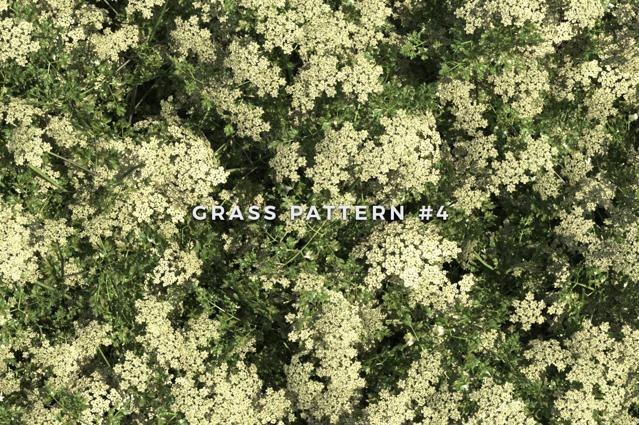 Seamless Grass Pattern/Texture 4