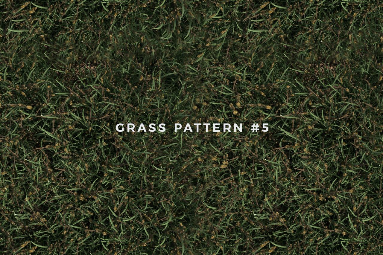 Seamless Grass Pattern/Texture 5