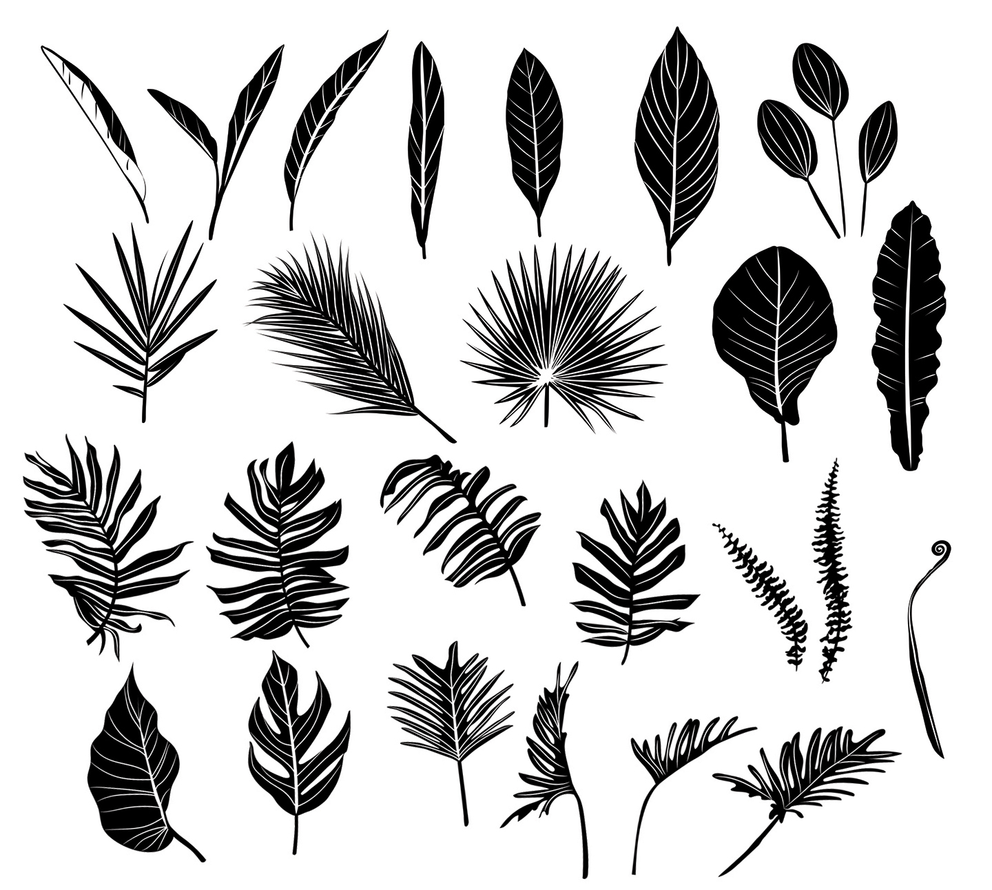 Black Leaf/Leaves Vector