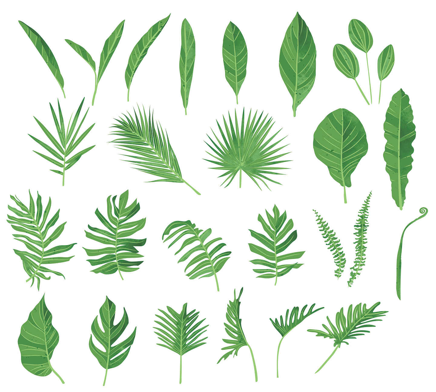 Green Watercolour Leaf/Leaves Vector