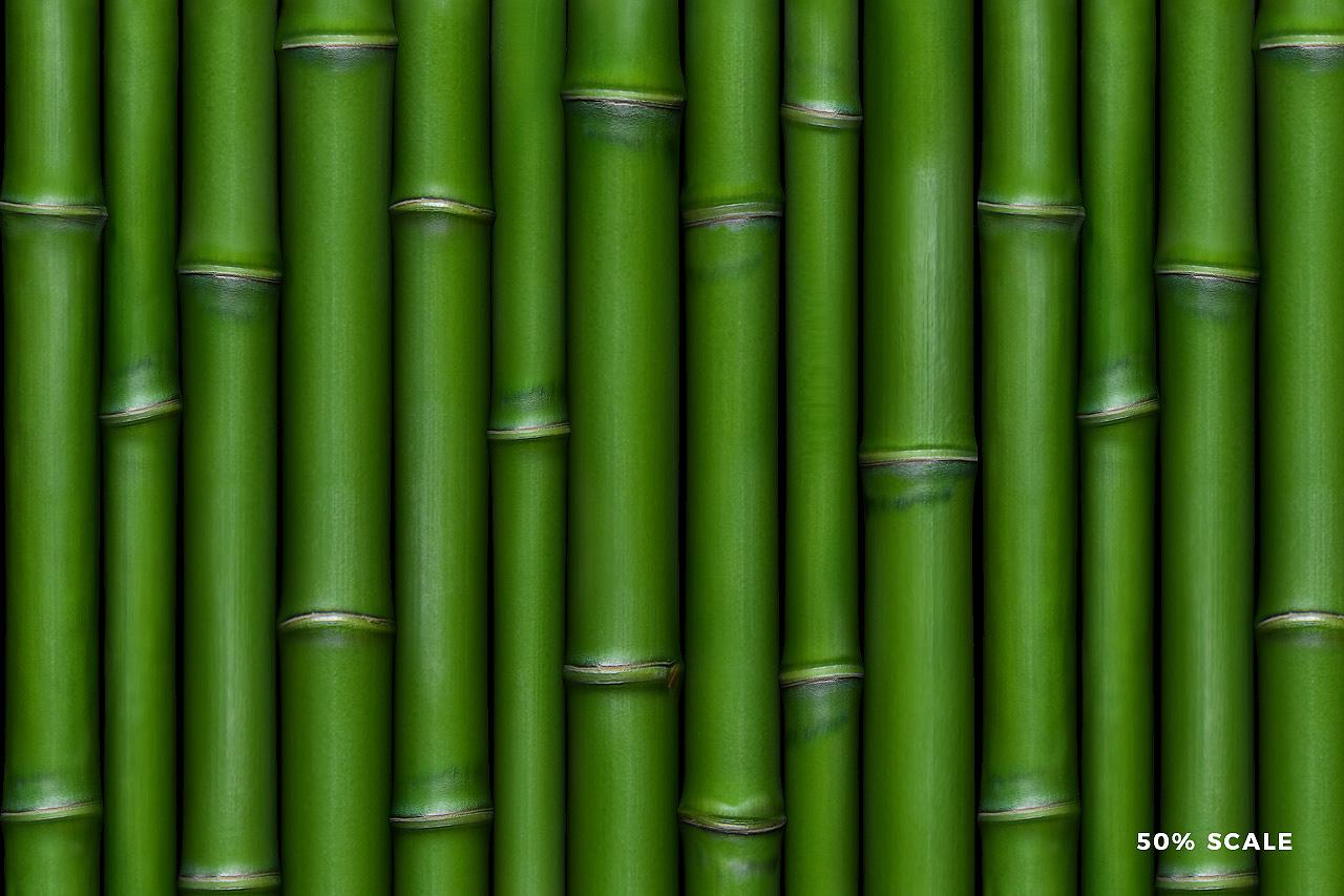 Seamless Bamboo Pattern 1