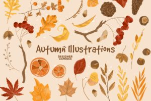 Autumn/Fall Vector Illustrations