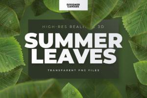 Summer Leaf PNGs