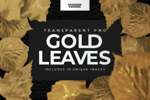 Gold Leaf Photo Overlays