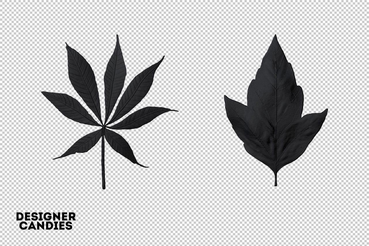 Black Leaf Clipart PNG