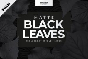 Transparent PNG Leaves Matte Black Edition