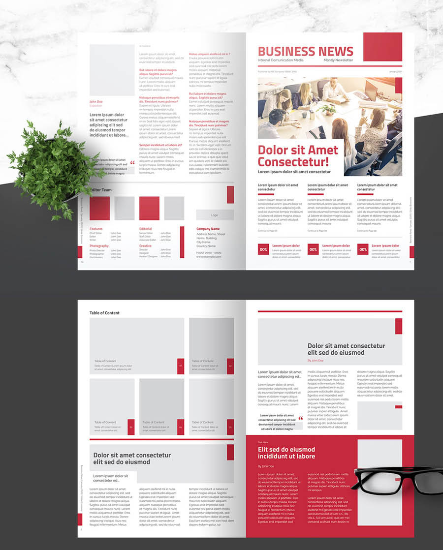 Business Newsletter with Light Red Accents