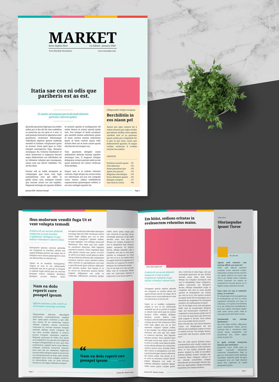Business Newsletter with Colorful Accents