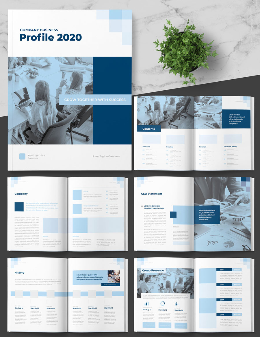 Company Profile Booklet Layout with Blue Accents