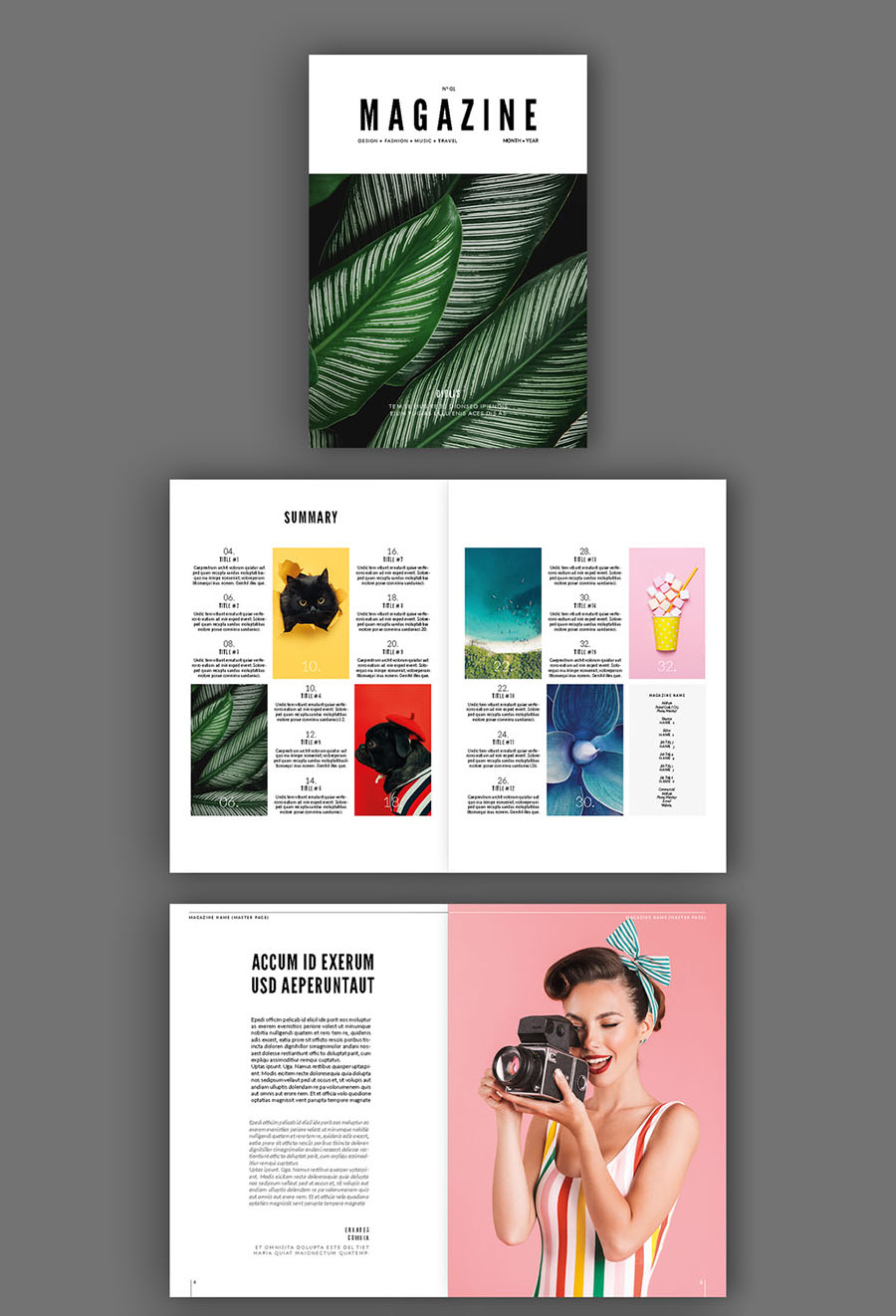 InDesign Magazine Layout Template