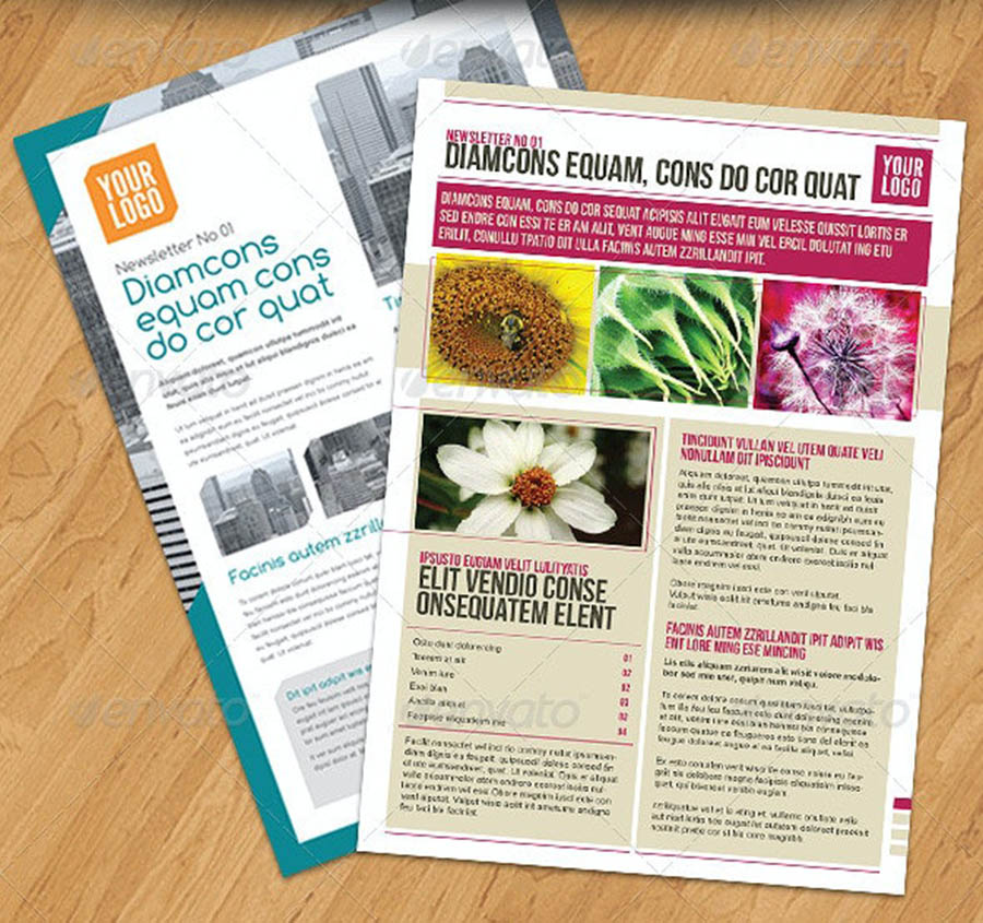 Newsletters PACK 2 in 1 InDesign Newsletter Templates