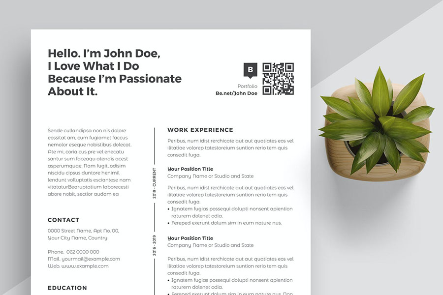 Sharp and Professional Resume Template