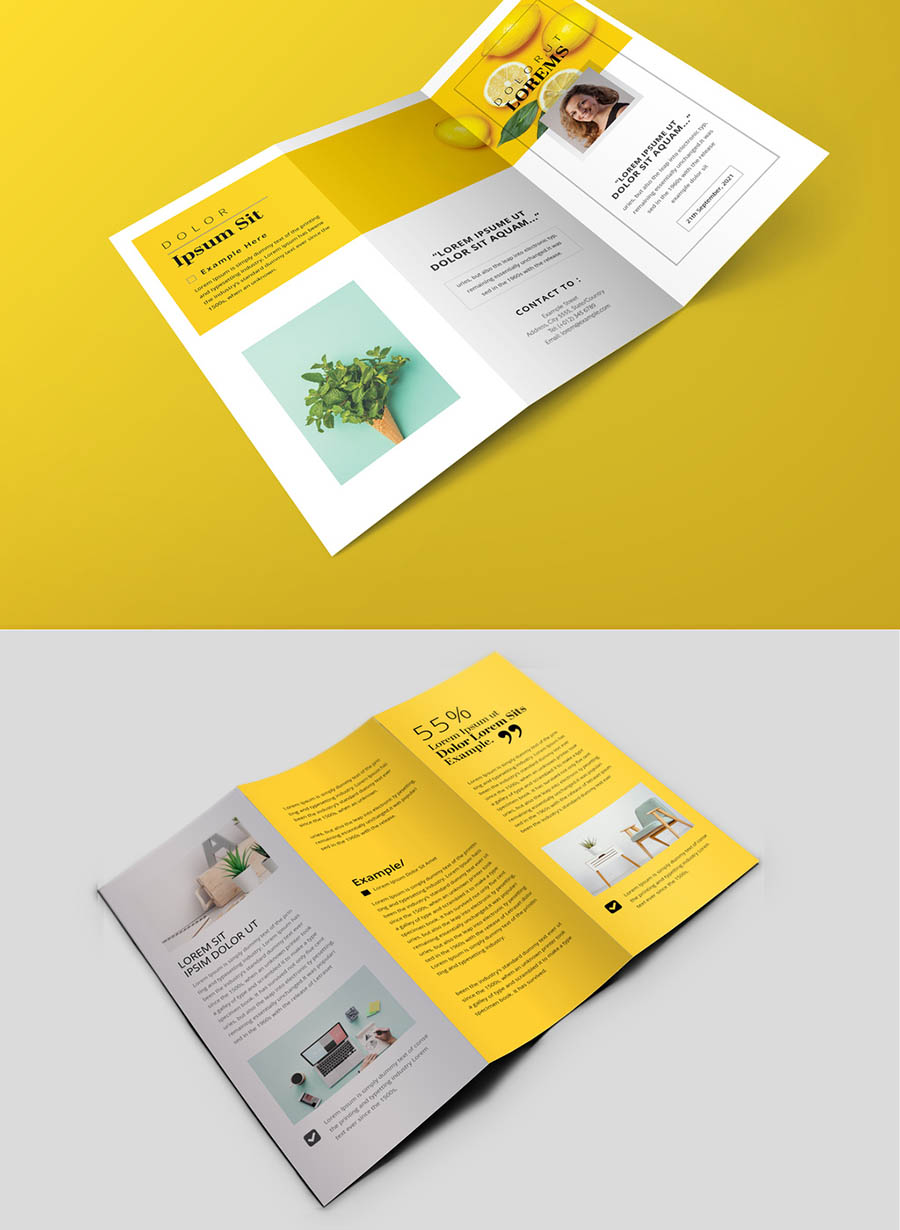 Minimal Trifold Brochure with Yellow Accents