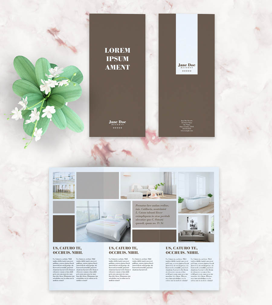 Brown and White Trifold Brochure Layout