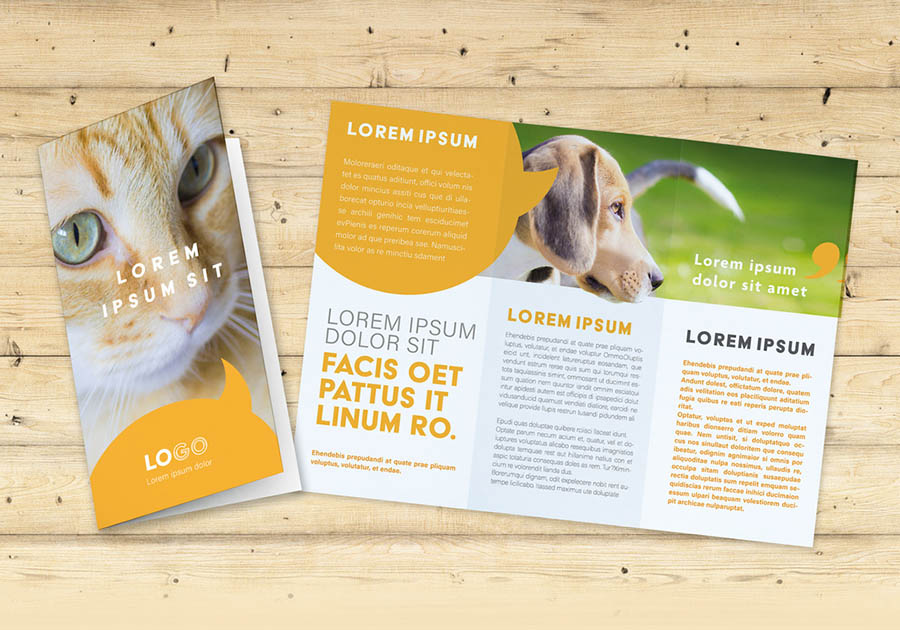 Trifold Brochure Layout with Yellow Speech Bubble Elements