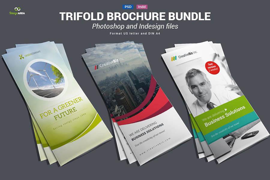 Bundle of Trifold Brochures