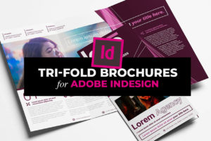InDesign Tri Fold Brochure Templates (INDD)