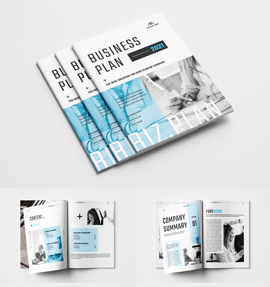 . Business Plan Layout