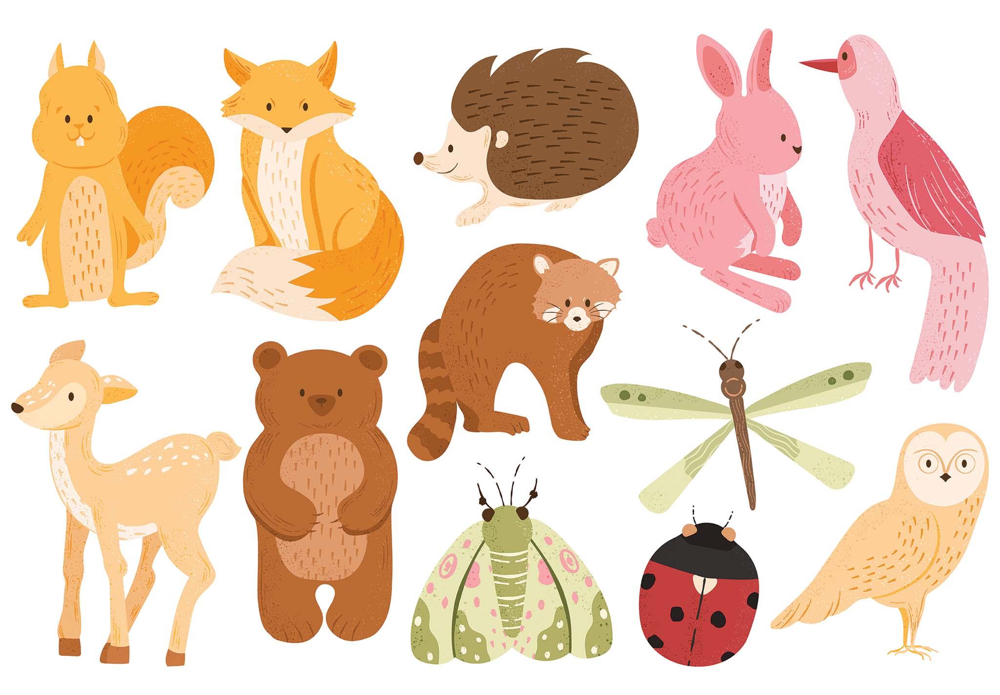 Autumn Fall Cute Woodland Animal Vector Clipart Illustrations